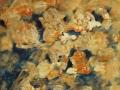 2000-Blumen_in_lachs
