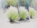 07-Lavendel-Aquarell