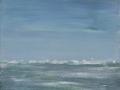 15-Wiesenmeer