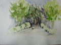 2001-Mas_de_Rey-Weg-Lavendel