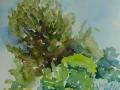 2006-Mas_de_Rey-Garten