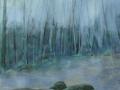 2005-Flusslandschaft